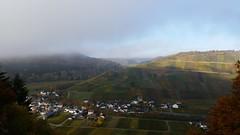 Autumnal Vineyards (lstr  clonn) Tags: wein herbst autumn wine rotweinwanderweg germany rhineland leaves
