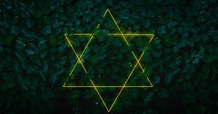 Untitled (#Arun) Tags: alike neon lights chennai arunganesan kerala travel triangles nature calm meditation