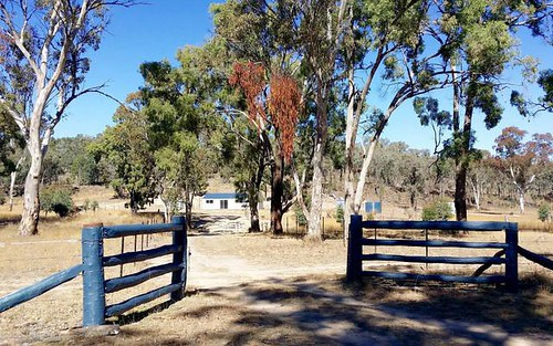 1069 Wallangra Road, Ashford NSW 2361