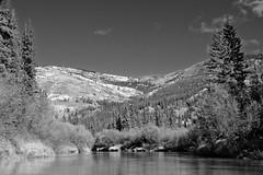 Mount Berdoe - Nordenskiold River (MIKOFOX  Show Your EXIF!) Tags: river willows canada nordenskioldriver fujifilmxt1 yukon water aspen fall spruce mountberdoe landscape xt1 september showyourexif mikofox communicationstower xf18135mmf3556rlmoiswr bw blackandwhite monochrome