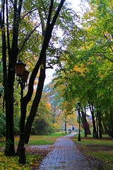 rainy day in the park... (green_lover) Tags: park autum fall rain rainy trees lamppost path hometown yrardw poland seasons vanishingpoint