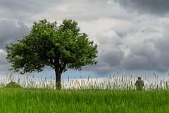 Natural man. (RKAMARI) Tags: anatolia clouds field friend green man minimalism outdoor rural sky travel tree turkey