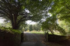 Doune back gate (KClarkPhotography) Tags: scotland travel kclarkphotography doune castle back gate soft dreamy romantic landscape rural