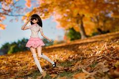 (CureLes) Tags: dd dds volks dollfiedream doll miruhi