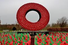 Lest We Forget .................... (nick.linda) Tags: remembranceday poppyday poppies armisticeday flandersfields ww1 ww2 nationalmemorialarboretum staffordshire memorial warheroes armedforces fallenheroes