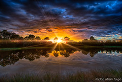Florida Sunset (DonMiller_ToGo) Tags: sunsetmadness hdrphotography nature reflection goldenhour lake florida hdr 5xp millerville onawalk outdoors sunsetsniper clouds d810 sunsets sky