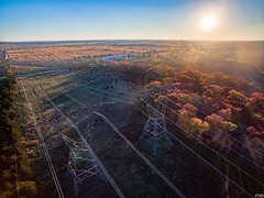 The Grid (patkelley3) Tags: grid power line sun forest autumn fall drone