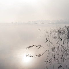 2016-10-31_09-22-24 (Pluie du matin) Tags: fog morning lake dawn misty daybreak foggy lac matin aube france hourtin hatman