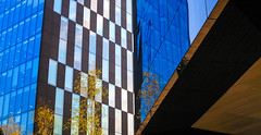 BRYAN_20161014_IMG_9451 (stephenbryan825) Tags: liverpool mannisland abstracts architecture buildings glass graphic reflection selects trees vivid