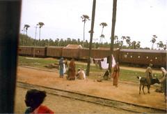 198002.515.indien.rameswaram (sunmaya1) Tags: india tamilnadu rameswaram