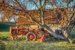 Tractor by the Shed (gabi-h) Tags: tractor farmmachinery farmequipment sunshine hastingscounty gabih november autumn fall farm tree grass
