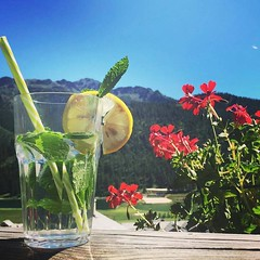 Mint & Lemon water is a great way to detox your body.  Besides being really yummy with its sweet and tangy flavor, lemon water can boost your metabolism and clear your skin  Via: chalet_de_pot_de_miel #detox #happy #vegan #beautiful #fitness #healthy #fun (wehealthy) Tags: diet beautiful motivation matchalatte foodart weightloss coffee latte happy foodstagram healthy follow4follow photooftheday morning inspiration foodstyling fun fitness detox sunday summer vegan instagood like4like food positive matcha yummy yoga