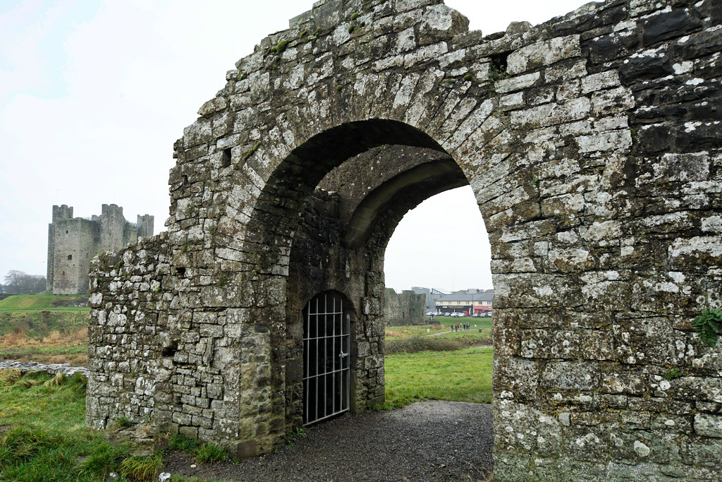 TRIM CASTLE AND NEARBY [COUNTY MEATH]-123616