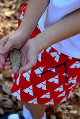 Oliver + S, Hopscotch Skirt for Thanksgiving (FrancesSuzanne) Tags: francessuzanne olivers oliverands hopscotch hopscotchskirt thanksgiving tepee