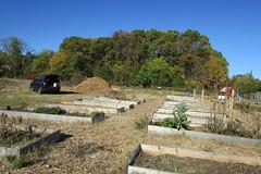 IMG_0874 (hammonton_garden) Tags: 2016 communitygarden fall hammonton southjersey nj gardenstate