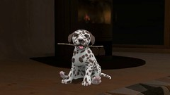 Dalmatian Puppies by Mutresse (Eeky Cioc) Tags: puppy dog mammal original mesh four paws scripted animated action cute