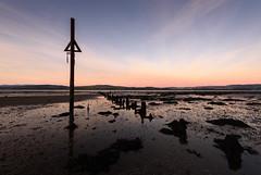 Low tide (GDDigitalArt) Tags: portglasgow scotland beach cold daylight dusk frost lowtide shore sunset tide timbers winter