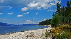 SUMMER (mariagrandi985) Tags: landscape lake sky clouds stones stonebeach pinetrees wildflowers mountains summer blue somethingblue yellow white green colors outdoor vacation serene colorful paisaje water weather nwn mariagrandi985 lavueltaalmundo diariodeviaje juegolvm
