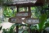 IMG_2451 (Cthonus) Tags: geotagged malaysia borneo longhouse rungus runguslonghouse