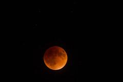 Supermoon Eclipse 20:47:45 EDT (bartlepm) Tags: eclipse nikon peter lunar bartlett supermoon