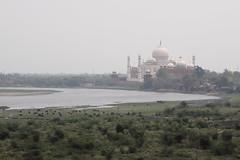 Le Taj Mahal au loin (Chemose) Tags: india building river eau tajmahal agra bâtiment inde fleuve fortrouge