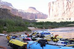 Grand Canyon 2015 604