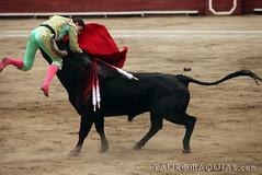 Cogida de Paco Urea en Lima (Vladimir Tern A.) Tags: gente bulls toros costumbres acho bullfighting bullfighters rimac tauromaquia tradiciones toreros limaperu matadores seordelosmilagros corridasdetoros taurinos plazasdetoros cogidas feriataurina culturayarte