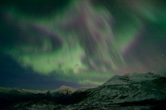 Thompson Pass Auroras (wolphcry) Tags: alaska aurora valdez northernlights thompsonpass