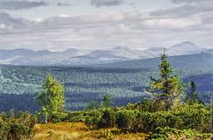 1998 Ural Mountains-9 (Alexander Kondakov) Tags: 1998 kodak kodakektachromee100vs landscape lens perm photobyalexanderkondakov russia ural uralmountains film minolta700si minoltaaf2885mmf3545 minoltaaf75300mmf4556 old