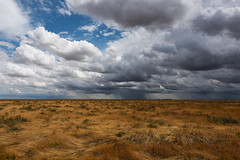 The storm approaches (Hay plains NSW) (Jeff 05) Tags: