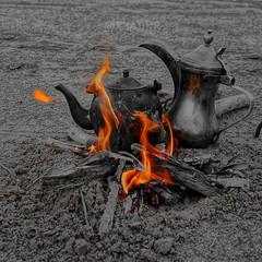 #colorsplash #عزل_لوني #السعودية #دلة #شاي #شاهي #جاي #بريق #hdr #nature #photographys #coffee #caffee #قهوة #مكشات #كشته #tea #fire #ksa #ksa #sonyalpha #hdr #عرب_فوتو #تصويري #السعودية #ضو #نار #صور #صورة #من_تصويري #نفود #صباح_الخير #goodmorning #goodm (Instagram x3abr twitter x3abrr) Tags: nature coffee fire tea sony goodmorning colorsplash hdr صور شاي كشته نار ksa caffee صورة جاي ضو تصويري السعودية photographys صباحالخير قهوة دلة sonyalpha شاهي نفود بريق مكشات عزللوني منتصويري عربفوتو goodmorningig