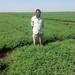 Chickpea farmer in Sudan
