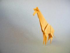 Jiraphael - Patricio Kunz (Rui.Roda) Tags: origami giraffe papiroflexia girafa girafe patricio jirafa kunz jiraf papierfalten jiraphael