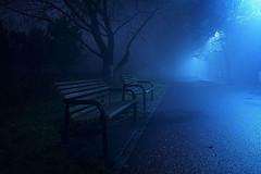bench (romy.hoogenboom25) Tags: bench blauw donker bankje