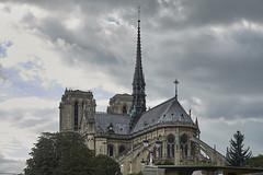 Navegando por el Sena 12 (CarlosJ.R) Tags: catedral francia notredame pars sena