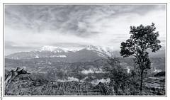 View from Bhundi (Annapurna Sud, Annapurna I, Hiunchuli and Machhapuchhre) (L'Abominable Homme de Rires) Tags: népal atalante bhumdi nb noiretblanc blackwhite canon 5dmiii 5dmkiii tamron 2470mmf28 machhapuchhre anapurnarange annapurna himalaya hiunchuli mardihimalbasecamp huwans clubaventure trekdumardihimal mardihimaltrek travel trekking mountain fishtail acap eos5dmarkiii