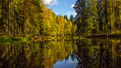 Autumn Harmony (Tatu234) Tags: autumn fall suomi finland vantaa north europe 2016 pond view beautiful landscape waterscape blue sky yellow trees reflection sony slta55 dslr camera amateur photographer photography photograph greatphotographers photooftheday potd nordic country northern nature naturelovers tree ruska