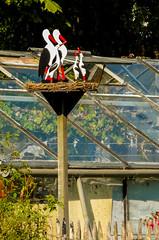 16-Stork Sculpture in Broek in Waterland  25Sep16 (1 of 1) (md2399photos) Tags: broekinwaterland hollandholiday25sep16 irenehoevetouristshop monnickendam