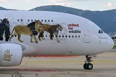 "Emirates Airlines A6-EEI Airbus A380-861 cn/123 Special ""Unite for Wildlife"" c/s @ LEBL / BCN 07-11-2016 (Nabil Molinari Photography) Tags: emirates airlines a6eei airbus a380861 cn123 special uniteforwildlife cs applied nov 2015 lebl bcn 07112016"