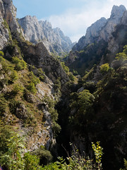 Cares: a side-valley (Jon Sketchley) Tags: spain espaa cares gorge ravine canyon mountains peaks cliffs precipice picosdeeuropa