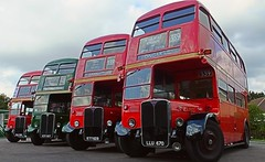 An impressive RT line-up at North Weald Station. 23 10 2016 (pnb511) Tags: londonbuscompany red doubledecker bus epping eppingongarrailway rt 542 rt1700 rt1790 rt3871