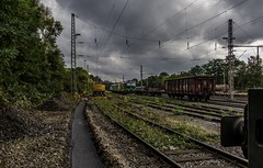 0217_2016_10_04_Wanne_Eickel_wf_ELOC_6193_274_TXLOGISTIC_MRCEdispolok_ES_64_F4_-_089_DISPO_6189_989_ATLU_6185_617 (ruhrpott.sprinter) Tags: ruhrpott sprinter deutschland germany nrw ruhrgebiet gelsenkirchen lokomotive locomotives eisenbahn railroad zug train rail reisezug passenger gter cargo freight fret diesel ellok dampf wanne eickel wanneeickel wf atlu dispo eiffage ell mrcedispolok txlogistik es64u2 es64f4 182 185 189 193 6182 6185 6189 6193 bosporussprinter liebherr zweiwegebagger railroadunit outdoor logo natur graffiti