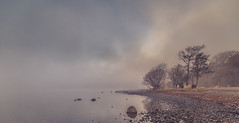 The Bonnie Banks of Loch Lomond (Kevin1314) Tags: loch lomond scotland fod water mist trees beach drama atmospheric