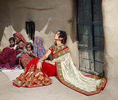 5805_1 (surtikart.com) Tags: saree sarees salwarkameez salwarsuit sari indiansaree india instagood indianwedding indianwear bollywood hollywood kollywood cod clothes celebrity style superstar star