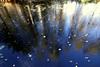 Freezy morning (JP Korpi-Vartiainen) Tags: luonto nature lokakuu october syksy autumn colors värit syksyn ruska joki river brook puro suovupalonen kuopio pohjoissavo maisema scenery finland ice jää jäinen heijastus reflection jpko