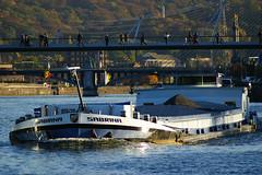 La Meuse (Lige 2016) (LiveFromLiege) Tags: peniche sabrina pniche bateau boat meuse maas luik liege lttich liegi lieja wallonie belgique belgium