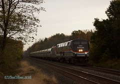Amtrak 805/NS 067 at Inman Ave/CP Potter in Edison, NJ 10/29/16 (PaulRose32) Tags: amtrak trains lehighvalley nj pa pennsylvania