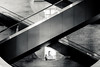 Louvre (http://arnaudballay.wix.com/photographie) Tags: 2016 paris architecture city cityscape graphisme septembre ville iledefrance france fr escalier x street streetphotography musée museum lelouvre louvre museedulouvre escalator woman