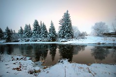 Winter's Arrival (P3ddl3) Tags: alberta outdoors winter hoar frost blindman river central trees snow ice