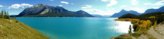 Abraham Lake (triciapaterson) Tags: abraham lake reservoir nature landscape water mountains fall